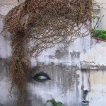 Street-Art-Faces-by-Andre-Muniz-Gonzaga-343676