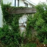 Street-Art-Faces-by-Andre-Muniz-Gonzaga-56542